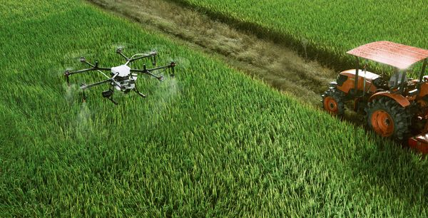 Artificial Intelligence (AI) can help building a strong Agriculture economy